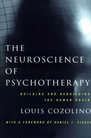 The Neuroscience of Psychotherapy, Building and Rebuilding the Human Brain by Louis Cozolino